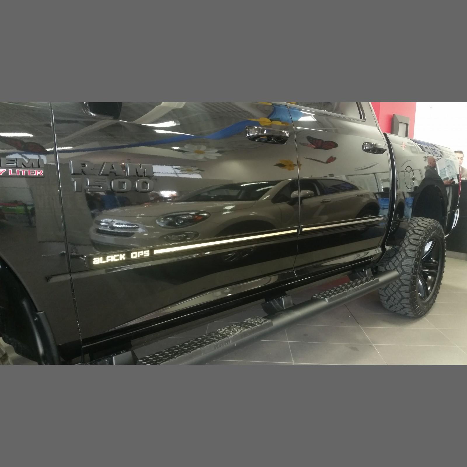 Body Side Moldings For 2010 Dodge Ram Pickup 1500 (Crew